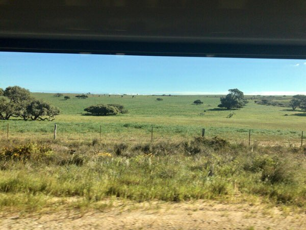 車内から見たオーストラリアの風景